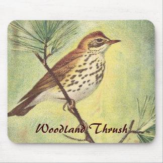Vintage Woodland Thrush Mousepad
