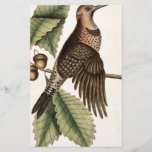 "Vintage Woodpecker Bird Print<br><div class=""desc"">Vintage style design,  in animal print of woodpecker bird. Perfect gift for yourself,  your loved one,  and those looking for something vintage,  country and rustic.</div>"