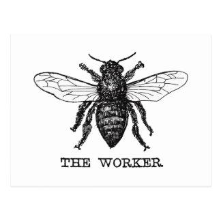Vintage Worker Bee Illustration Postcard