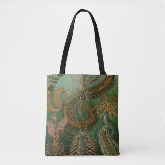 Vintage Worms Annelids Chaetopoda by Ernst Haeckel Tote Bag