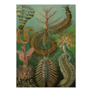 Vintage Worms Annelids, Ernst Haeckel Invitations
