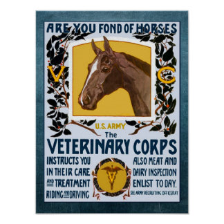 Vintage WW1 Veterinary Corps Army Recruitment Poster