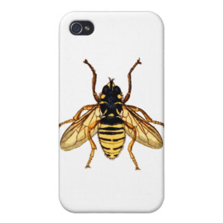 Vintage Yellow Bee iPhone 4/4S Case