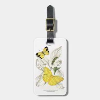 Vintage Yellow Butterflies Insects Bag Tag