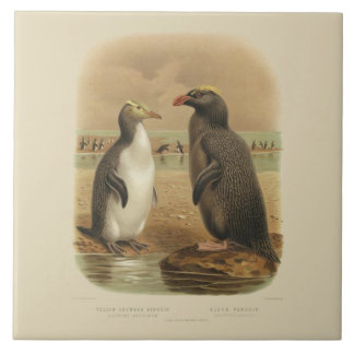 Vintage Yellow-Crowned Penguin and Black Penguin Tile