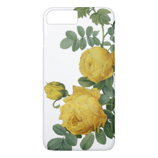 Vintage yellow rose painting case