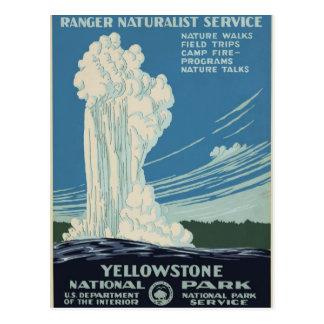 Vintage Yellowstone National Park Geyser WPA Postcard