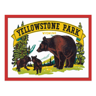 Vintage Yellowstone Park Wyoming USA Post Cards