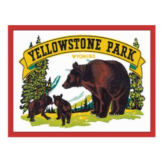 Vintage Yellowstone Park Wyoming USA Postcard