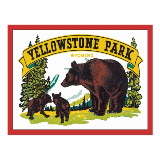Vintage Yellowstone Park Wyoming USA Postcard