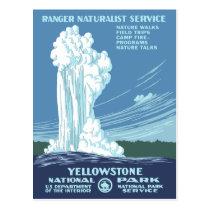 Vintage Yellowstone WPA Postcard