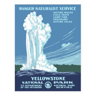 Vintage Yellowstone WPA Postales