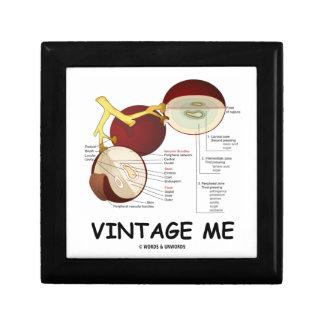 Vintage yo (baya de la uva) caja de recuerdo