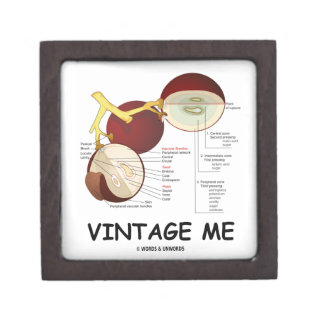 Vintage yo (baya de la uva) caja de joyas de calidad