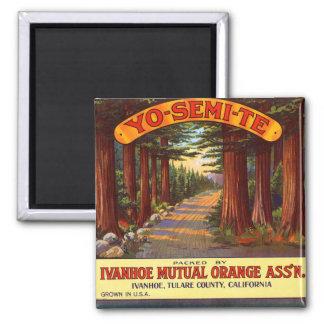 Vintage Yo-Semi-Te Orange Label Magnet