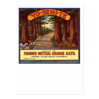 Vintage Yo-Semi-Te Orange Label Postcard