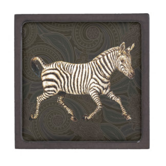 Vintage zebra running with paisley design gift box