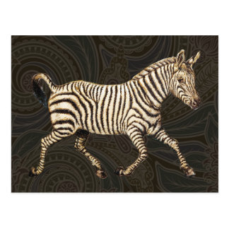 Vintage zebra running with paisley design postcard