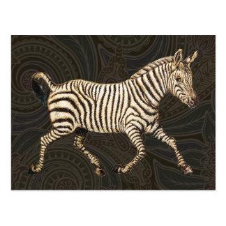 Vintage zebra running with paisley design postcards