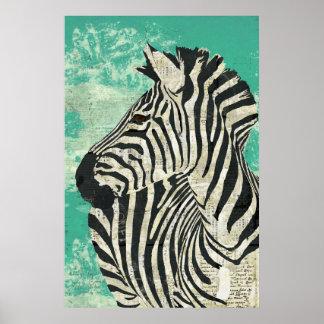 Vintage Zebra Turquoise  Art Poster