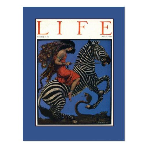 Vintage Zebra with Art Nouveau Woman Rider Postcards