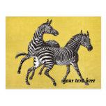 Vintage Zebras Post Card