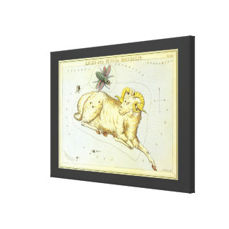 Vintage Zodiac, Astrology Aries Ram Constellation Canvas Print