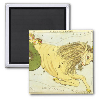 Vintage Zodiac, Astrology Capricorn Constellation Magnet