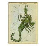 Vintage Zodiac, Astrology Scorpio Constellation Posters