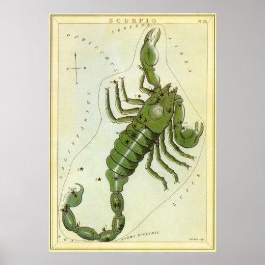Vintage Zodiac, Astrology Scorpio Constellation Poster