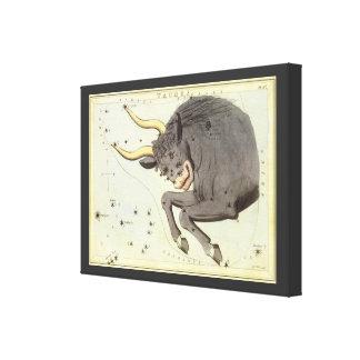 Vintage Zodiac Astrology Taurus Bull Constellation Canvas Print