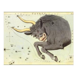 Vintage Zodiac Astrology Taurus Bull Constellation Postcard