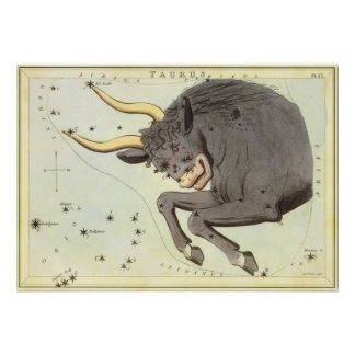 Vintage Zodiac Astrology Taurus Bull Constellation Poster