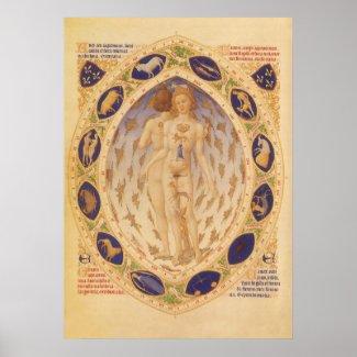 Vintage Zodiac Chart, 1416 Print