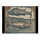 Vintage Zodiac- The Pisces Postcard