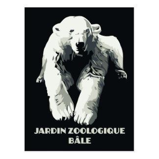 Vintage Zoo ad Basel polar bear Postcard