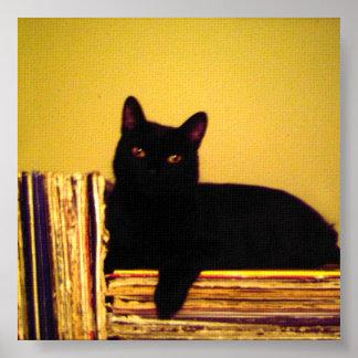Vinyl Kitty Poster