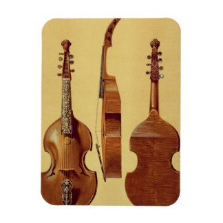 Viola d'Amore, 18th century, from 'Musical Instrum Magnet