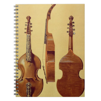 Viola d'Amore, 18th century, from 'Musical Instrum Notebook