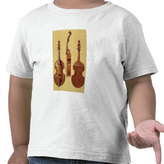Viola d'Amore, 18th century, from 'Musical Instrum Tees
