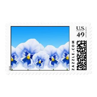Viola Flowers Postage Stamp