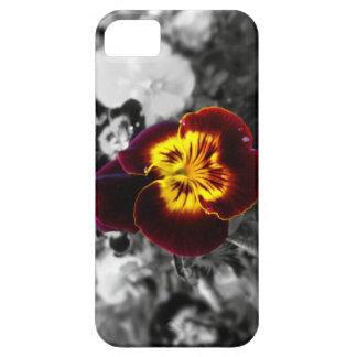 Viola iPhone SE/5/5s Case