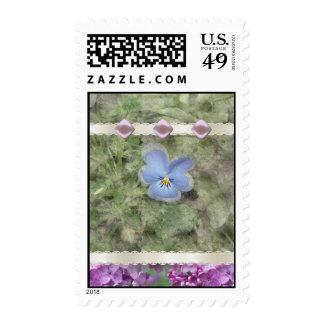 Viola Lilac Flowers Postage Stamp