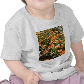 Viola Panola Deep Orange Tee Shirts