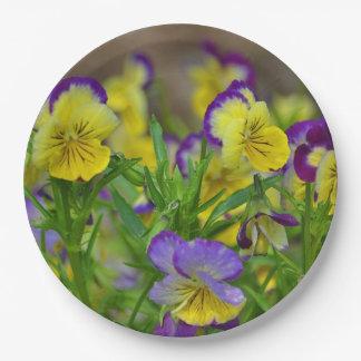 Viola Paper Plate