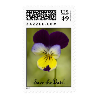 Viola, Save the Date! Stamps