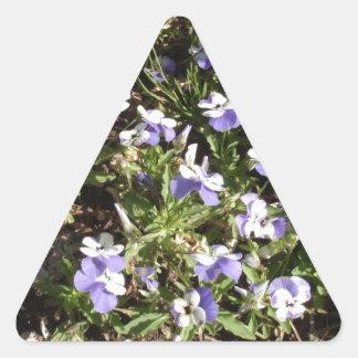 Viola 'Sorbet Delft Blue' Triangle Stickers