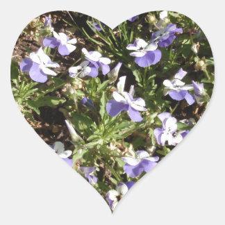 Viola 'Sorbet Delft Blue' Heart Stickers