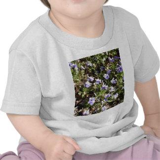 Viola 'Sorbet Delft Blue' Shirts