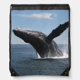 Violación adulta de la ballena jorobada mochilas